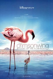 The Crimson Wing: Mystery of the Flamingos (2008